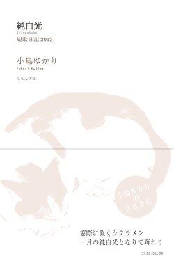 画像1: 小島ゆかり歌集『純白光』(じゅんぱくこう)