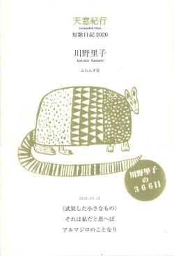 画像1: 川野里子歌集『天窓紀行』(てんまどきこう)