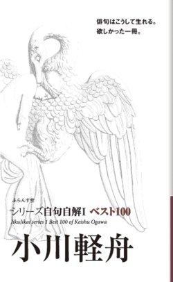 画像1: シリーズ自句自解1ベスト100『小川軽舟』(おがわけいしゅう)