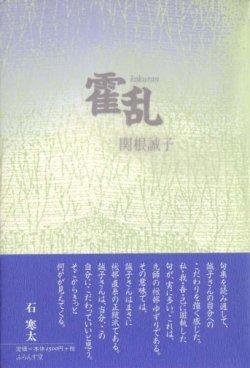 画像1: 関根誠子『霍乱』(かくらん)